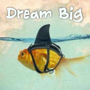 Swim Hard Dream Big